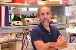 Joel Richter, PhD, professor of molecular medicine(Photo Courtesy of UMassMedNow)