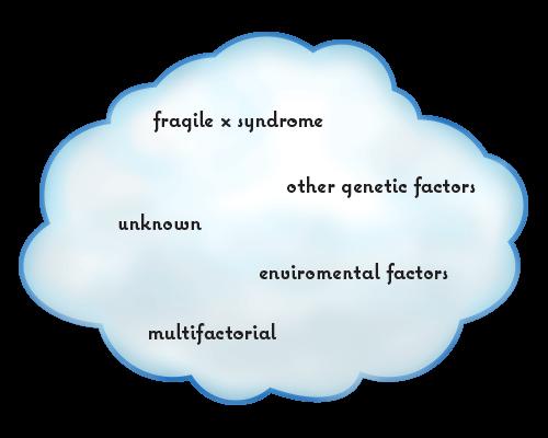 ASD FXS Cloud