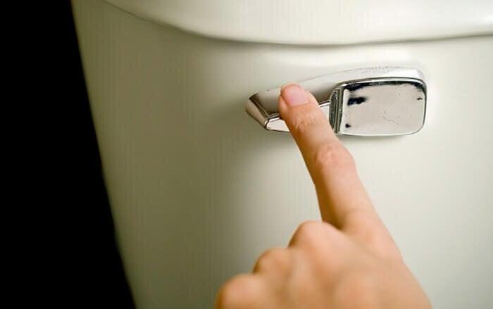 2-flush-toilet