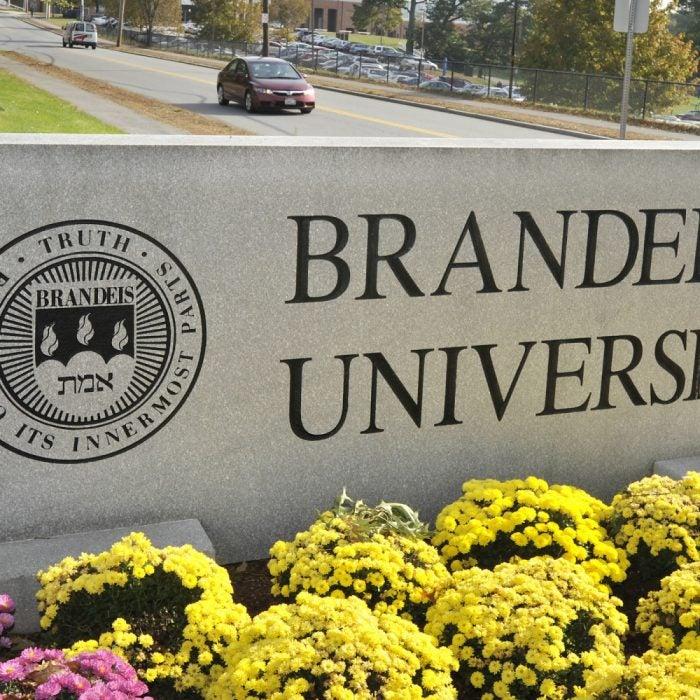 brandeis fragile x research