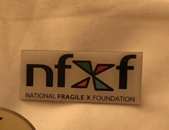 NFXF Logo Pin - Rectangle