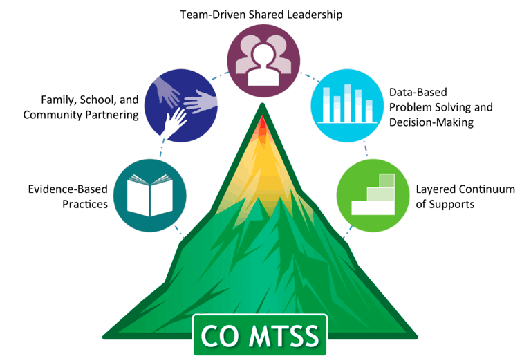 The primary components of MTSS.