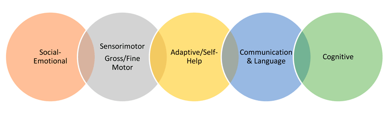 Transdisciplinary Team Approach from social emotional to cognitive