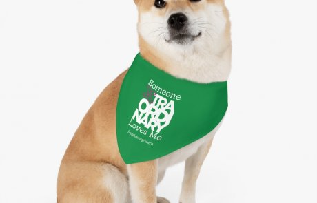 dog with xtraordinary banner