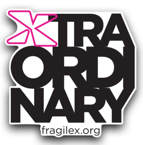 Xtraordinary logo as magnet