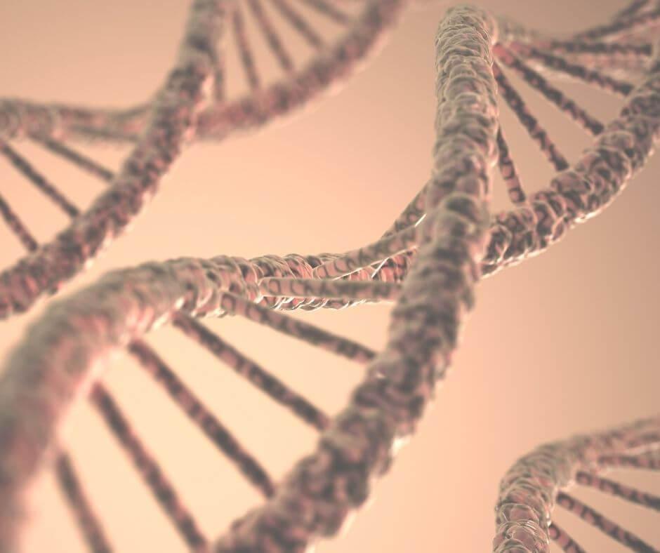 illustration of DNA close up