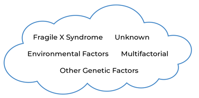 Cloud with Fragile X syndrome, unknown, environmental factors, multifactorial, and other genetic factors