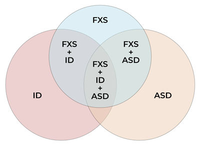Venn diagram showing ID, ASD, FXS